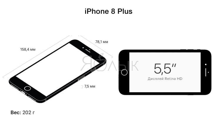 iPhone 8 Plus размеры
