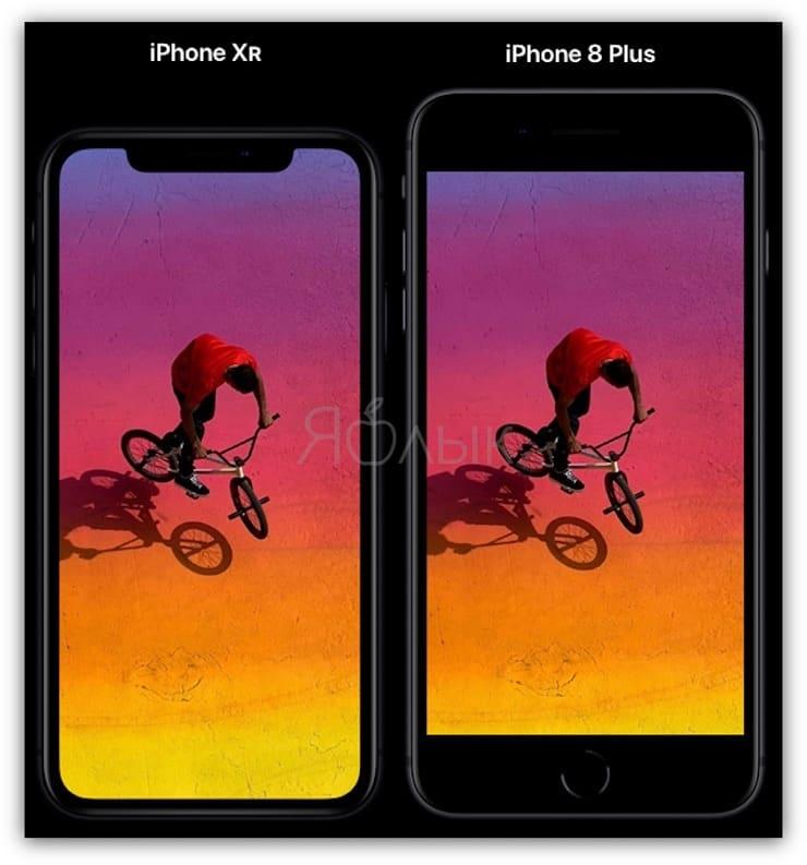 Сравнение размеров iPhone XR и iPhone 8 Plus