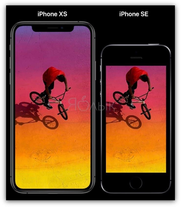 Размеры Сравнение размеров iPhone XR и iPhone 8 Plus
