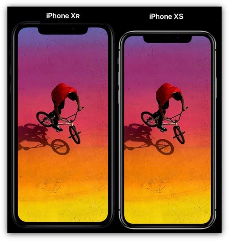 Сравнение дисплеевiPhone XS и iPhone XR
