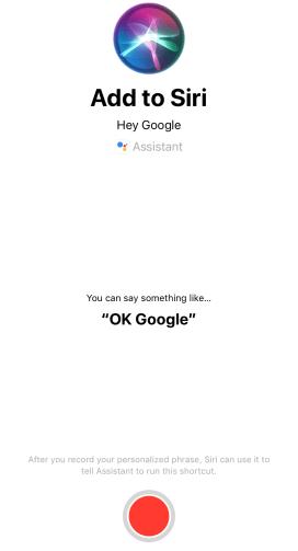 Siri-Google