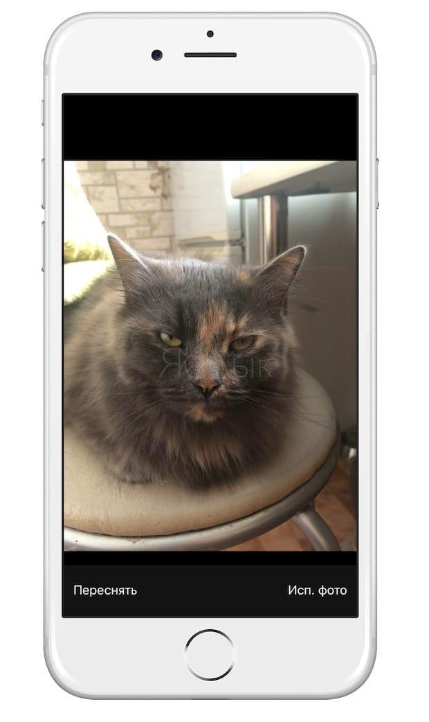 Как снимать фотографии или видео прямо в «Заметках» для iPhone и iPad