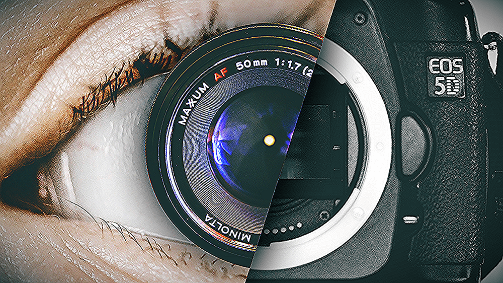 котенок фото человеческого глаза на фотоаппарате никогда