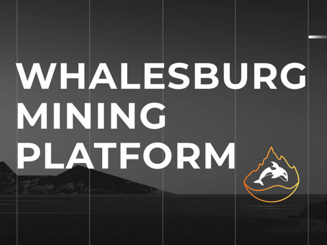 Whalesburg - Обзор майнинг пула - Статистика и общая информация