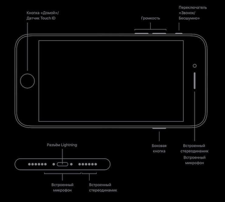 Кнопки и разъемы iPhone SE 2020 года