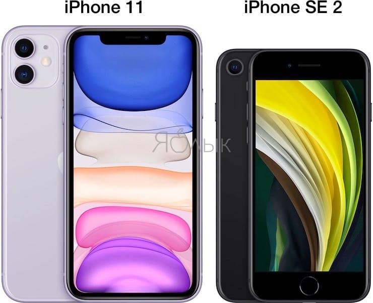 Размеры iPhone SE 2 и iPhone 11