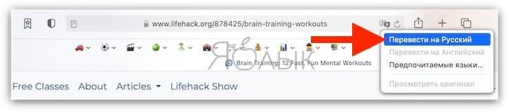 Как включить режим переводчика в Safari в macOS Big Sur