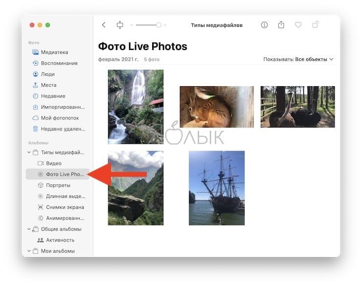 Как передать Live Photo с iPhone на Mac