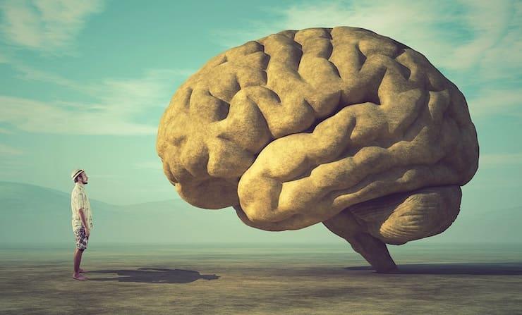 Правда ли, что человек использует свой мозг только на 10%?