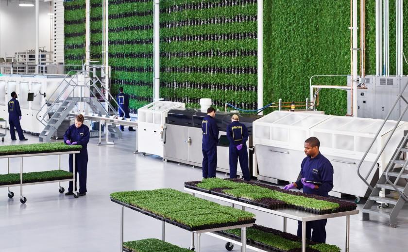 """Многие ученые, инженеры и садоводы за работой на своем предприятии по выращиванию гидропоники в Южном Сан-Франциско. """"width ="""" 840 """"height ="""" 520 """"/>   <div class="""
