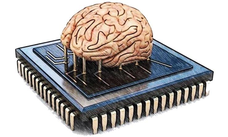 Какова емкость человеческого мозга?