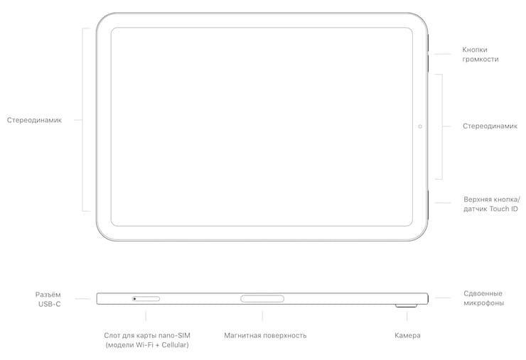 iPad mini 6 - расположение кнопок и разъемов